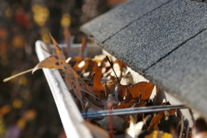 Are Your Gutters and Roof Drains Clogged?