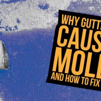 Why Gutters Cause Mold And How To Fix It